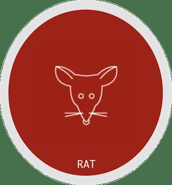 Signe du rat