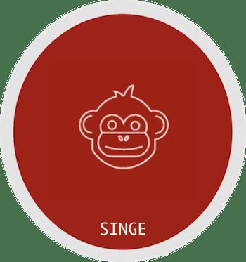 Signe du singe