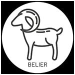 Horoscope du jour du Bélier