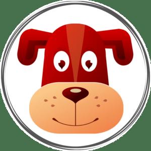horoscope chinois 2021 chien