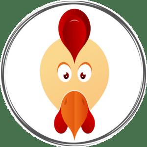 Portrait astro chinois du coq