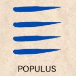 géomancie populus