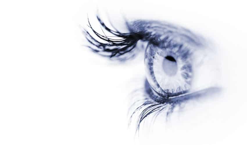 yeux d'une femme, fond blanc