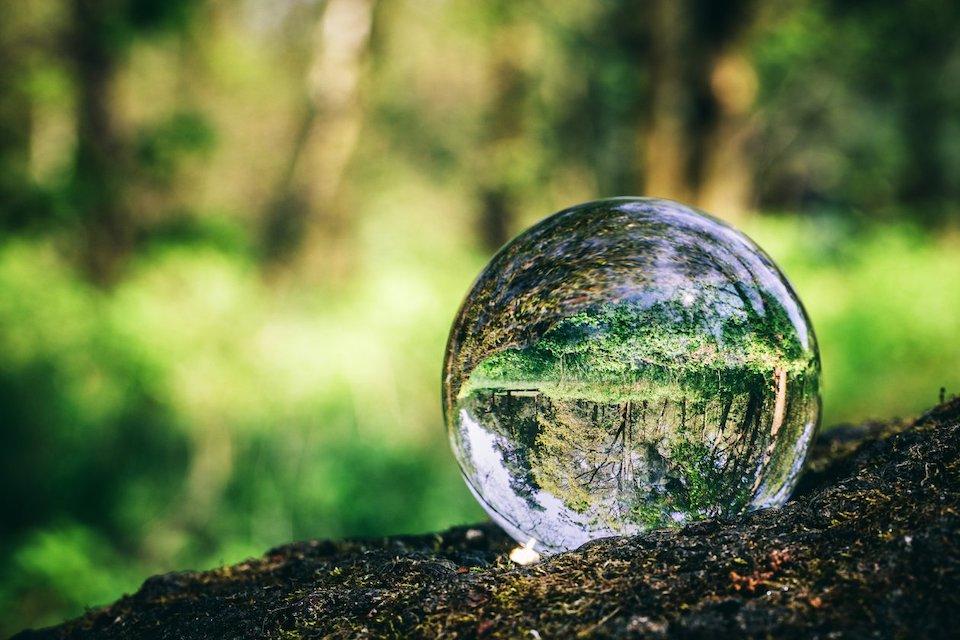 boule de cristal dans la foret