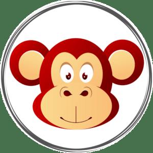 Portrait astro chinois du singe