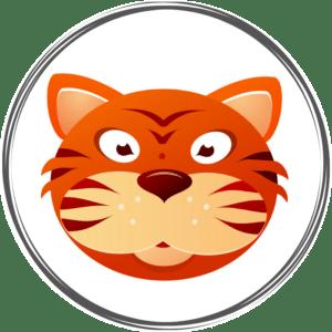 Portrait astro chinois du tigre