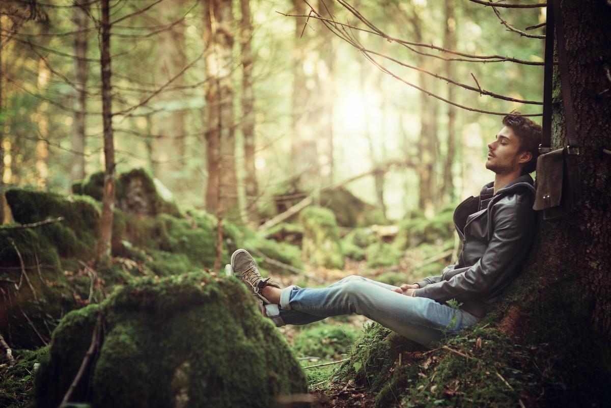 homme assis contre un arbre dans la foret