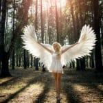 un ange dans une clairière