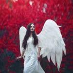 un ange ailé sous un arbre rouge