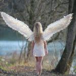 un ange ailé dans une foret