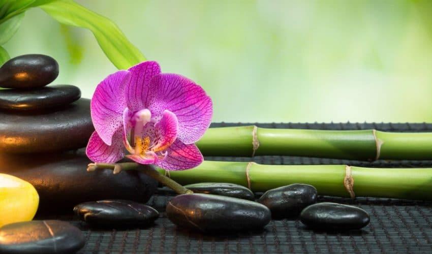 Le feng Shui : l'atout bien-être
