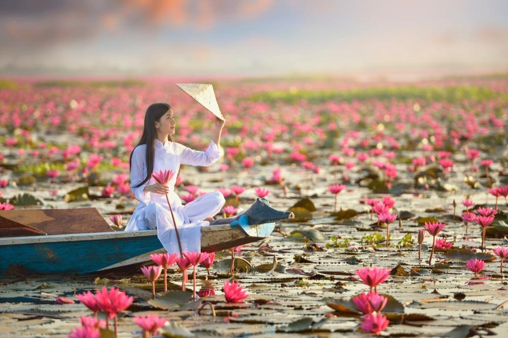 fleur de lotus lexique